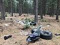 Dump Site near Mount Shasta Before (33915094683).jpg