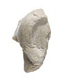 Ear from a statue of king or queen MET 57.180.82.jpg