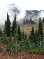 Edith Basin with fall colors and fog. Mid September 2015. (6a2dab0e8c2c4c4daaf912f25810a80f).JPG