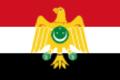 Egyptian revolutiony flag.png