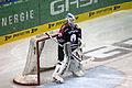 Eisbären Berlin-Nürnberg Ice Tigers-2015-02-15-cc-by-denis-apel-08.JPG