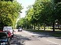 Errwood Road, Burnage - geograph.org.uk - 63150.jpg