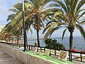 Esplanade-marbella.jpg
