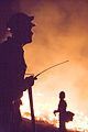 FEMA - 33379 - A Northern California fire crew works into the night in California.jpg