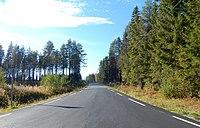 FV602 Skramstadsæterveien.jpg