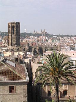 Fale - Spain - Barcelona - 13