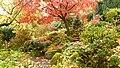 Fall trees in Southwest Portland (5240434072).jpg