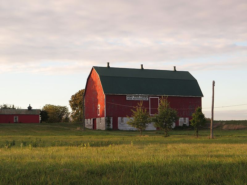 File:Farm, Chatham-Kent Highway 3, Chatham-Kent, Ontario (21762851232).jpg