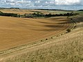 Farmland, East Garston - geograph.org.uk - 230146.jpg