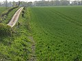 Farmland and lane, Hatherden - geograph.org.uk - 404286.jpg