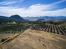 Aerial view of a sunny day near Mascota