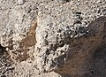 Fault breccia Keystone Thrust Red Rock Canyon NV.jpg