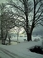 February Winter Light Greater Glottertal - Mythos Black Forest Photography 2013 Fog Glotter Creek Mountain View - panoramio.jpg