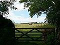 Field gate, Godolphin Estate - geograph.org.uk - 224746.jpg