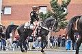Fiestas Patrias Parade, South Park, Seattle, 2017 - 281 - horses.jpg