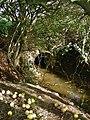 Fitling Drain, Danthorpe - geograph.org.uk - 273460.jpg