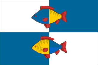 Ishimsky District - Image: Flag of Ishimsky rayon (Tyumen oblast)