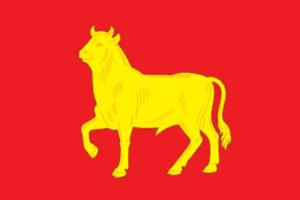 Kuybyshev, Novosibirsk Oblast - Image: Flag of Kuibyshev (Novosibirsk oblast)