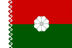 Flag of Paranginsky rayon (Mariy-El).png