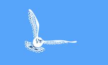Bandiera degli Inuvialuit.png