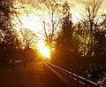 Flickr - Duncan~ - Battersea Park.jpg