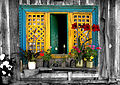 Flickr - Sukanto Debnath - Window and Flowers.jpg