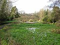 Flood Meadows, Alton, the old watercress beds - geograph.org.uk - 1092582.jpg