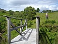 Footbridge on the Bluestack Way - geograph.org.uk - 856801.jpg