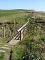 Footbridge on the coast path at Blackstone Point - geograph.org.uk - 769103.jpg