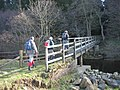 Footbridge over the Tarset Burn - geograph.org.uk - 1224674.jpg