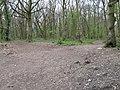 Footpath junction in Ladies Wood - geograph.org.uk - 1245792.jpg