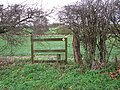 Footpath marker in hedge - geograph.org.uk - 1593372.jpg