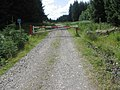 Forest cycle route - geograph.org.uk - 498551.jpg