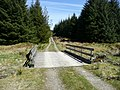 Forestry road - geograph.org.uk - 789746.jpg