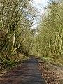 Former Railway - geograph.org.uk - 1103607.jpg