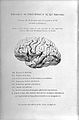 Frederic Bateman, On aphasia or loss of speech... Wellcome L0028662.jpg