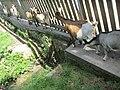 Freizeitspaß zum Nulltarif -Tiergehege Muggensturm - panoramio.jpg