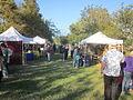 Fringe 2012 Plessy Park Tents.JPG