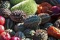 Fruits Exotiques CL J Weber (2) (23592871921).jpg