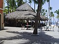 GRAND OASIS RESORT AND CASINO-PUNTA CANA - panoramio.jpg