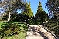 Garden Serralves (2).jpg
