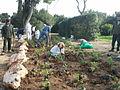 Gardening at Yemin Orde (6797736501).jpg