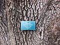 Gardenology.org-IMG 2565 ucla09.jpg