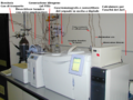 Gascromatografo con desorbitore termico.png