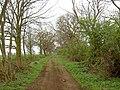 Gate Wood Lane - geograph.org.uk - 1246839.jpg