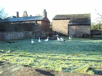 Harker, Cumbria - Image: Geese geograph.org.uk 319549