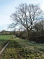 Gibbet Lane - geograph.org.uk - 746250.jpg