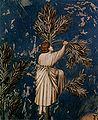 Giotto di Bondone 013.jpg