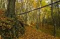 Gmina Zabierzów, Poland - panoramio (127).jpg