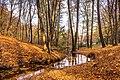 Golden colors of Goloseevsky park.jpg
